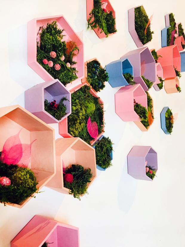 art-botanica-hexagon