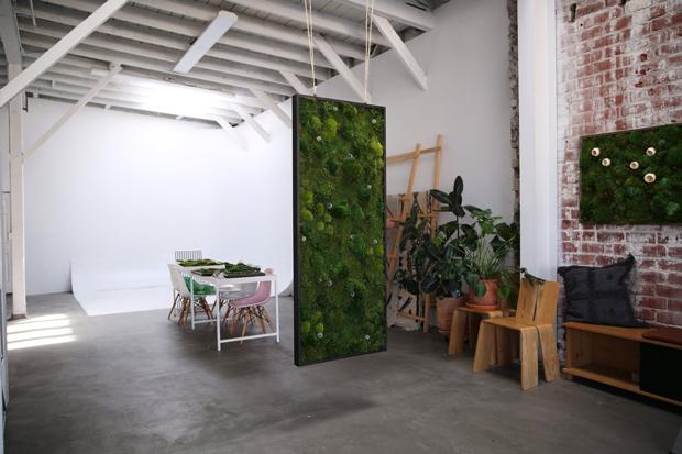 hanging-art-botanica