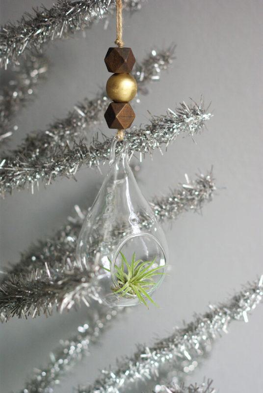 クリスマスツリーオーナメント エアープランツ