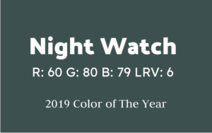 PPG Interior Paint in Night Watch
